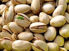 High quality pistachio nuts