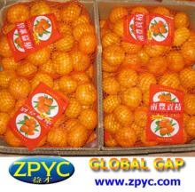Chinese sweet baby mandarin