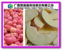 Freeze Dry Apple