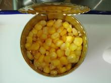 new crop canned sweet kernel corn
