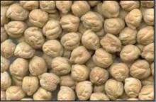 Kabuli Chickpeas for sale