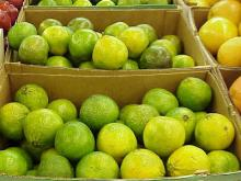 100% Natural Green and Yellow Oranges