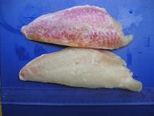 Frozen fish,frozen Red mullet