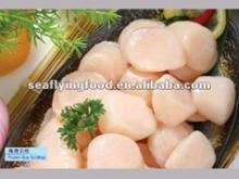 frozen raw bay scallop