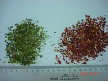 Dried green bell pepper 3-3mm
