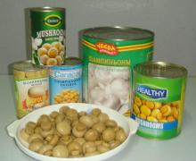 Canned Whole Mushroom Fresh Crop Material Nutritious