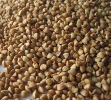 Roasted Buckwheat Kernels 2013Crop