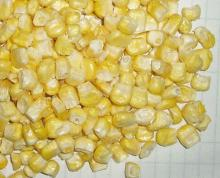 FD Sweet corn--vegetables