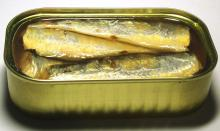 club canned sardine in oil