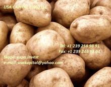 Potatoes, Fresh White Potatoes, Fresh carrots washed