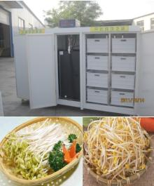 bean sprouts machine/wheat sprouts growing machine/wheat sprouts seedling machine