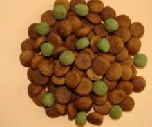dog Food Extruder