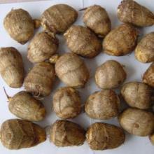 high-quality fresh taro