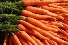 fresh carote