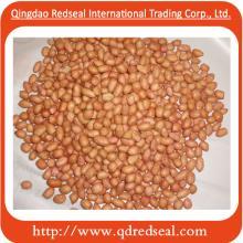Chinese Raw peanut kernels