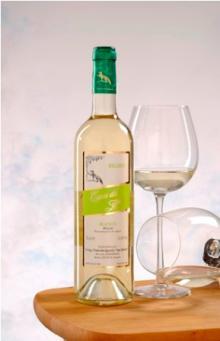 Spanish White Wine. Designation of Origin