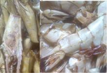 Dry   Shrimp   Shell  & Head