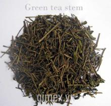 Green tea stem