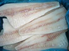 Frozen Pacific Cod/P-cod Fillet