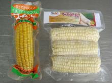 sweet corn from vietnam