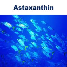 natural astaxanthin 5% oil suspension