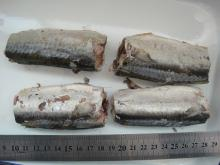 MACKEREL IN NATURAL OIL 425G
