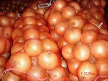 We Sell Fresh Onion