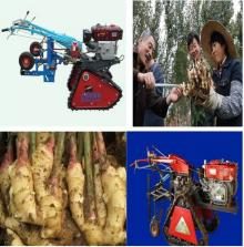 Sell Ginger Carrot Harvester Ginger Reap cultivation Machinery