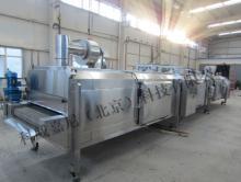 Mesh belt tunnel iqf freezer SD-500 kg per hour