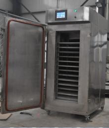100 kg hot sales liquid nitrogen flash freezer