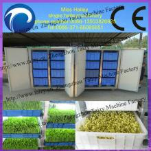 mung bean sprouts making machine