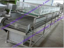 Vegetable and fruit dryer machine