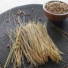 Organic Vegan Spaghetti (Linguine)