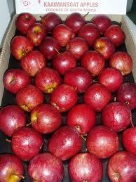 Fresh Top Red Apples from South Africa