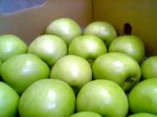 Fresh Granny Smith Apples from South Africa
