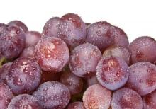 Best Fresh  purple   grapes  from south Africa