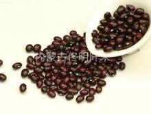 Round  purple   kidney  Bean
