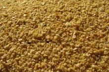 Fish meal 55%,60%,65% for sale