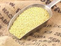Yellow Millet Hulled and Glutinous