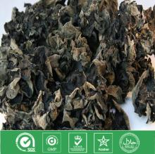 Dried black fungus mushroom and dried fungus