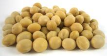 Soybean (Dry)