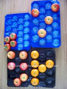 Packing PP Fruit Tray
