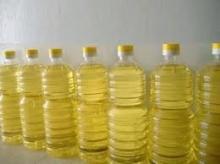 Jatropha oil Available...