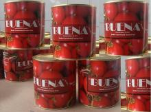 800 Grams Tomato Paste in Can