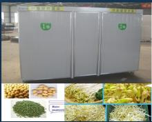 Bean sprout sprouting or sprouter growing machine