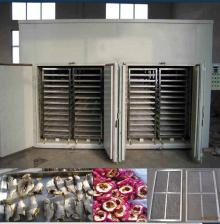 Fresh Vegetable Fruit Sea Food Fish Dryer\Drying Machine (WSHG)