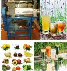 Industrial lemon squeezer press machine fruit vegetable crusher and juicer