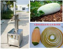 Stainless steel papaya pomelo pumpkin papaya peeling machine