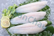 Pangasius fillet, well trimmed