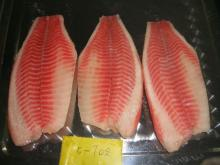 USA well trimmed tilapia fillet CO treated